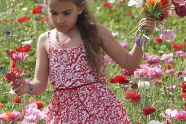 childrenphoto01A5585C12-3CAA-80A9-753B-7F7214DD5535.jpg